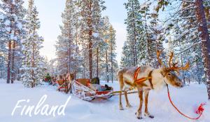 โปรแกรม 'finrelax' ของฟินแลนด์เป็นเรื่องเกี่ยวกับการเดินทาง